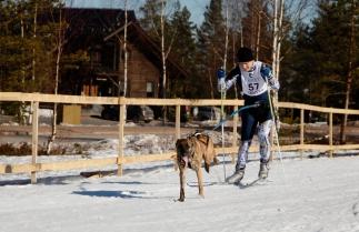 Kuva 1 Jämillä kuvaaja Mira Kuhlman